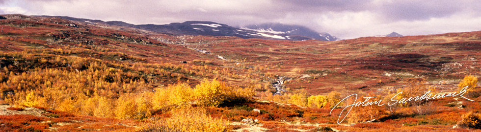 Jostein Sandsmark